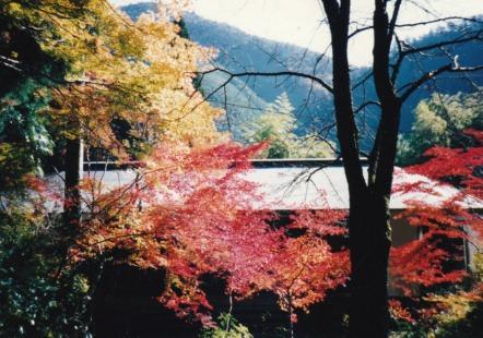 62こ高山寺1