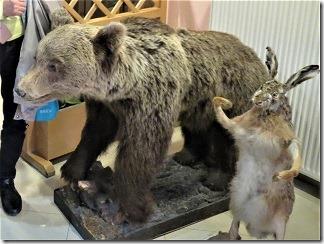 熊はく製1-2